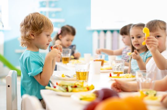 Vastuulliset ruokapalvelut -kehitysohjelman kokeilujen tulosjuhlan tallenne